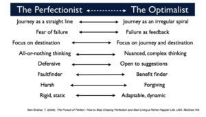 Perfectionist-versus-the-Optimalist